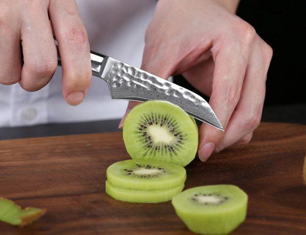 TURWHO PRO VG10 Core Razor Sharp Damascus Steel Paring Knife with Ebony Handle