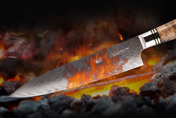 FINDKING NEW 67 layers AUS-10 Damascus Steel Sapele wood Handle 8 inch Chef Knife